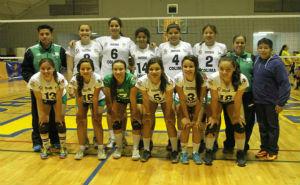 Liga Mexicana de Voleibol