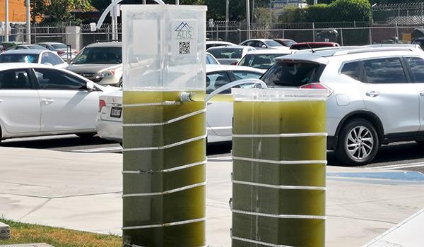 Biotecnólogos de la UANL eliminarían la contaminación del aire