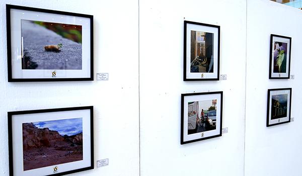 UANL promueve sustentabilidad con muestra fotográfica