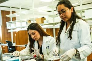 Dará Universidad británica fondos a investigadores de la UANL