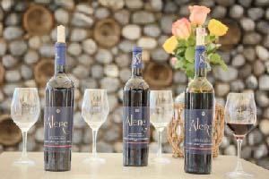 Los secretos de Alere, el vino de la UANL