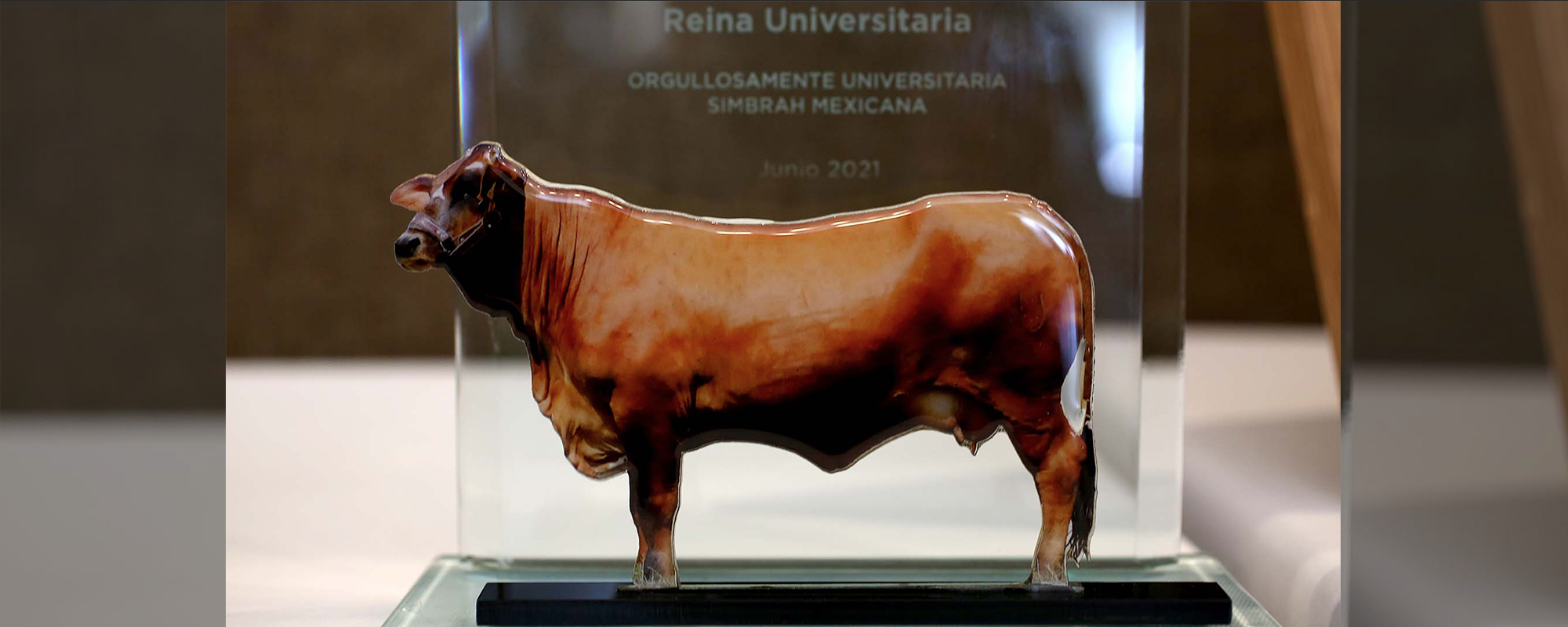 Global Livestock Solutions presented the awards.