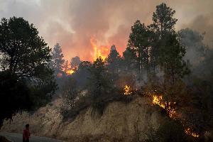 Prevenir incendios forestales es responsabilidad de todos